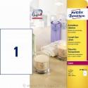 Etikete za označevanje, prozorne 210 x 279 mm - L7784-25