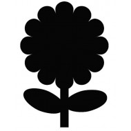 Črna kredna tabla - Roža