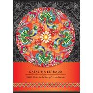 Zvezek Catalina Estrada A4 karo